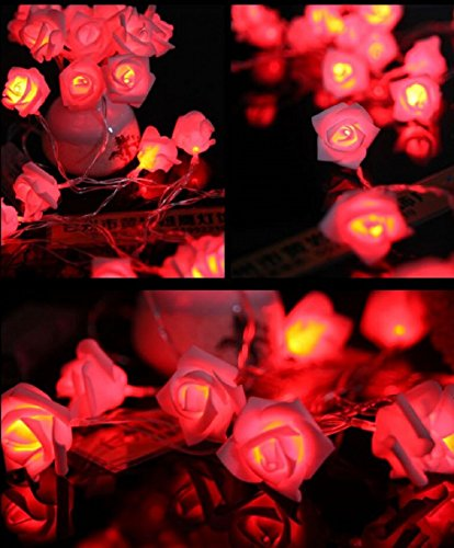 Guirlande Lumineuse Fleurs