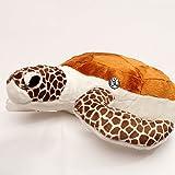 Meersschildkröte CRUSH braun 43 cm Schildkröte Plüschtier von kuscheltiere.biz