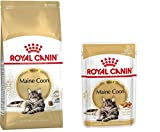 1x Royal Canin Maine Coon Adult Premium 400g + 4x Royal Canin Maine Coon Frischebeutel 85 g