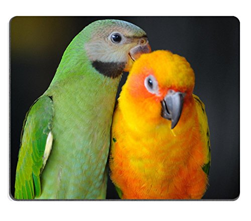 Msd Natural rubber Gaming Mousepad Image ID: 28897409Beautiful cute Red Breasted parrocchetto in