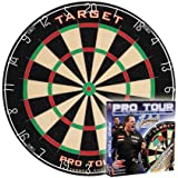 Target Dart Board - Pro Tour Dart Board