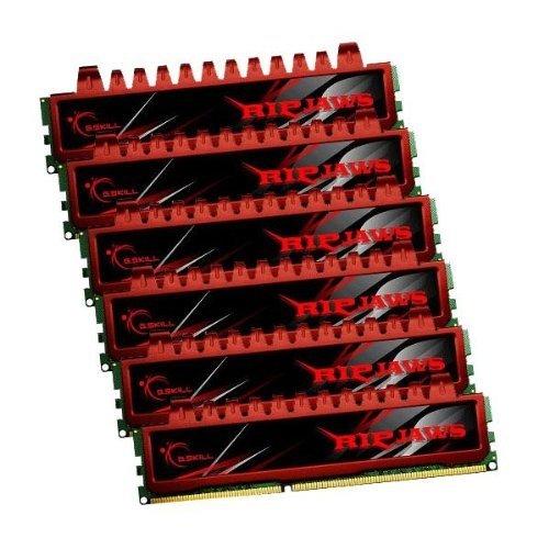 G.Skill PC3-10666 Arbeitsspeicher 24GB (1333 MHz, 240-polig) DDR3-RAM Kit -