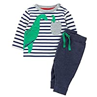 Chumhey Baby & Toddler Striped 3D Green Dinosaur Embroidered Sweater 2Pcs Pants Set,White&Grey,4-5 Years