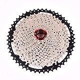 LBWNB Kassette 12 Fach Fahrradkartuschen 11-50T Für Fahrrad/Straßenrad/Mountainbike Black & Silver
