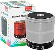 ShopAIS WS-887 Mini Bluetooth Speaker with FM Radio, Memory Card Slot, USB Pen Drive Slot, AUX Input Mode (Sil