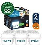Aqua Optima Evolve confezione 2 anni, 12 filtri per acqua x 60 giorni - adatto *BRITA Maxtra (non *Maxtra+) - EVD912
