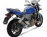 Auspuff Endschalldämpfer MIVV GP Carbon KAWASAKI Z 750 04-06 ZR750, ZR750J