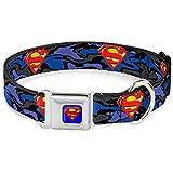 Buckle Down Sicherheitsgurt mit Schnalle, Halsband für Hunde, klein, Batman, Blau, 2,5cm breit, für 9–15–