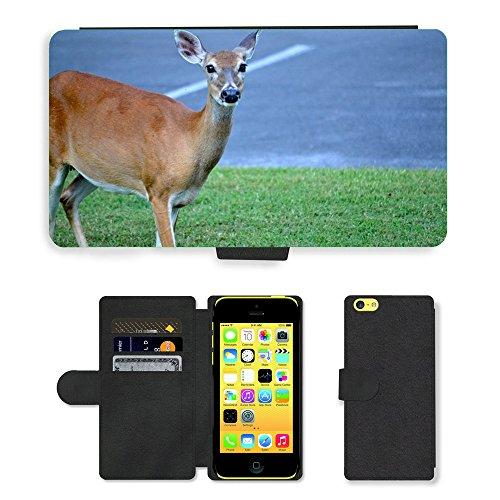 Just Mobile pour Hot Style Téléphone portable étui portefeuille en cuir PU avec fente pour carte//m00140254Deer Wildlife Animaux Sauvages//Apple iPhone 5C