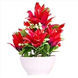 #8: JaipurCrafts Premium New Arrival Forever Collection Artificial Flowers with Pot