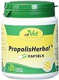 cdVet Naturprodukte PropolisHerbal 100 Kapseln
