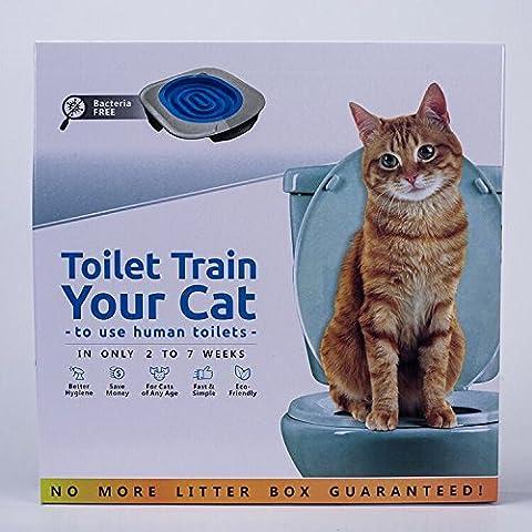 Maury Allin Katze Toilette Ausbildung Kätzchen keine Katzentoilette unschädliches