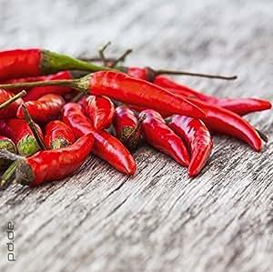 posterdepot Glasbild Peperoni - Mexikanische Küche - Größe