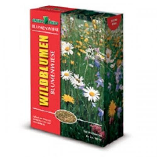 Greenfield Wildblumen-und Kräuterwiese mit Gräsern 10kg, Rasensamen, Rasensaat