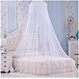 Princess Hanging Round Lace Canopy Bed Netting Comfy Student Dome Mosquito Net for Crib Twin Full Queen Bed White
