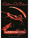 new Officially Liscenced Product Children Of Bodom - Hate Crew Flagge