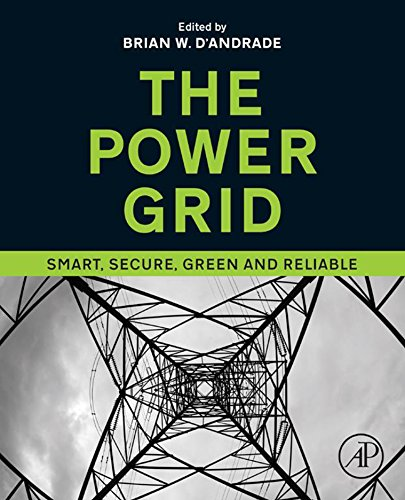 The Power Grid: Smart, Secure, Green and Reliable (English Edition) Adams Grid
