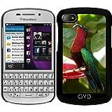 Coque pour Blackberry BB Q10 - Colibri Au Repos by BluedarkArt