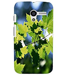 MOTOROLA MOTO X LEAFES Back Cover by PRINTSWAG