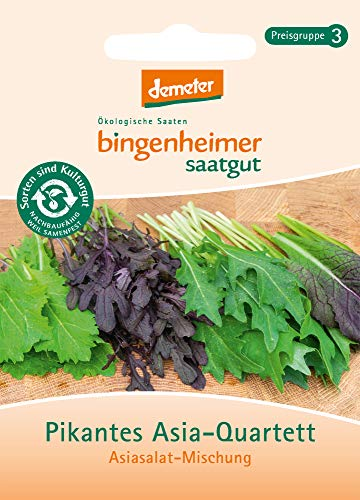Bingenheimer Saatgut AG Bio Pikantes Asia-Quartett (6 x 1 Stk) -