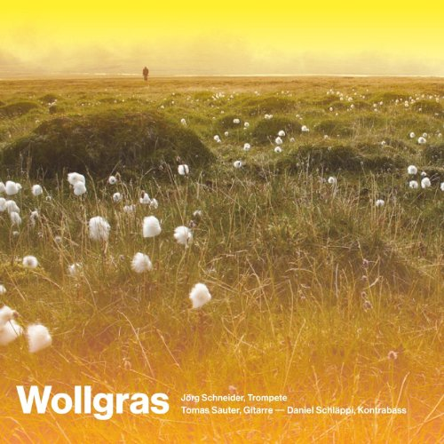 Wollgras