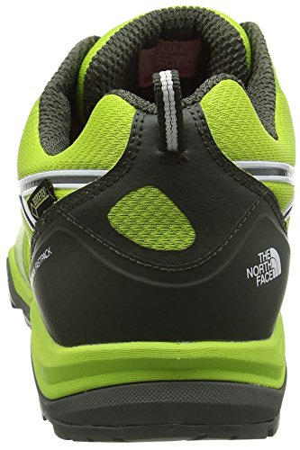 The North Face M Hedgehog Fastpack Lite Gtx, Sneakers basses homme Vert (Limegrn/Tnfwht)