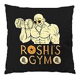 style3 Roshis Gym Baumwollkissen mit Füllung master turtle hermit dragon ball z songoku