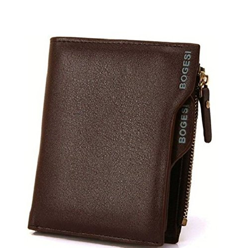 Evana Bogesi Premium Bifold Leather Men's Wallet (Brown)