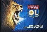 Flagge mit Hohlsaum Olympique Lyon Löwe - 100 x 140 cm + gratis Aufkleber, Flaggenfritze®