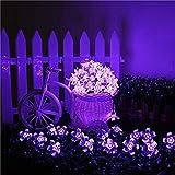 Kyson Guirlande lumineuse solaire de 50LED en forme de fleurs Violet 5mètres Utilisation en extérieur, jardin pour fêtes, Noël, plein air, décoration, etc.