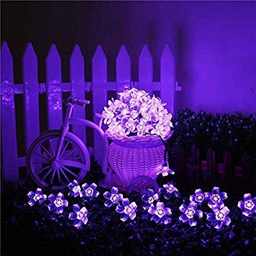 kyson 50er LED luce solare catena fiori giardino esterno viola 5meter, fiori illuminazione solare per Party, Natale, Outdoor, Fest Deko ecc.