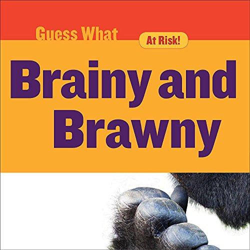 brainy-and-brawny-gorilla