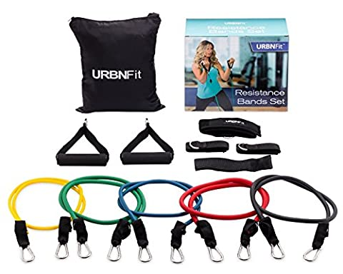 Resistance Bands Set (12 Piece) Includes Door Anchor, Ankle & Wrist Strap, Exercise Guide And Carrying Bag For Strengthening And Training (Pro Series) by