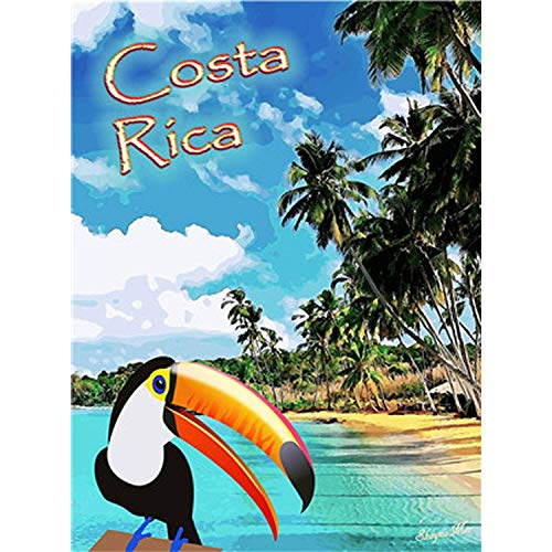 Froy Costa Rica Wand Blechschild Retro Eisen Poster Malerei Plaque Blech Vintage Personalisierte Kunst Kreativität Dekoration Handwerk Für Cafe Bar Garage Hause