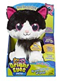 Bright Eyes Rosy Kitty Plush Toy - Best Reviews Guide