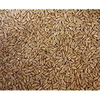 iffland MERINO EUROPA Kiloware Dinkelkörner, Dinkel, z. Nachfüllen v. Dinkelkissen oder Wärmekissen (12kg) preisvergleich bei billige-tabletten.eu