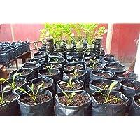 Dharti Enterprise Plastic UV Protected Grow Bag, Black, 18 x 18 in