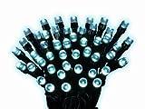 Kaemingk Durawise Batterie LED Ricelight, Außen, 7.1 m, 96 Lichter, schwarzes Kabel, kaltweiße Dioden 497190