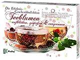 Feelino Matcha XXL Geschenk-Kollektion Kalender Adventskalender (Tee- und Snack Delikatessen aus Japan, Verschiedene Grüner Tee, Matcha Spezialitäten, Einsteiger-Set zum Probieren)