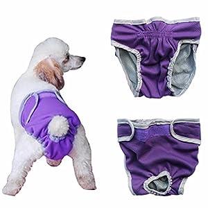 iiniim weiblich Hunde Schutzhose Haustier Unterhose Unterwäsche Welpenhose Hose Lila Medium