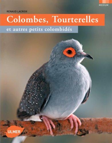 Colombes, tourterelles et autres petits colombidés par Renaud Lacroix