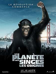 La Planète Des Singes - Les Origines - 40X60 Cm Affiche / Poster