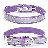Welpen Hundehalsband,Einstellbare Mikrofaser Halsband Puppy Cat Halskette,Hundehalsbänder für Welpen,Katzen,für Mädchen Jungen (Lila, XS)
