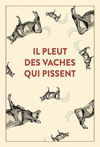 Il pleut des vaches qui pissent : 300 accidents d'expressions : une seule victime, la langue française...