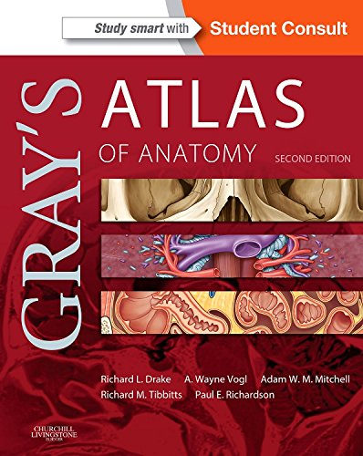 Gray's Atlas of Anatomy, 2e (Gray's Anatomy)