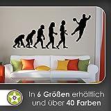 KIWISTAR Evolution - Handball Ballsport Verein Olympia Wandtattoo in 6 Größen - Wandaufkleber Wall Sticker