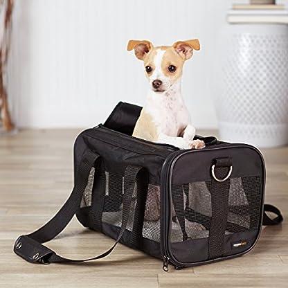 Amazon Basics Pet carrier bag, soft side panels 2