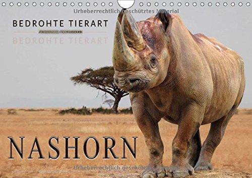 Bedrohte Tierart - Nashorn (Wandkalender 2018 DIN A4 quer): Beeindruckende Tiere, die nicht unterschätzt werden dürfen. (Monatskalender, 14 Seiten ) (CALVENDO Tiere)