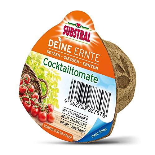 Portal Cool Substral Deine Récolte Saatkegel Cocktail de tomates - Graines Culture