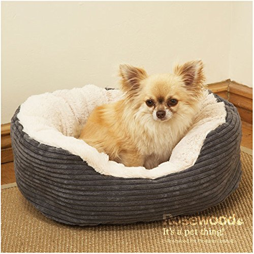 Rosewood-Jumbo-Cord-Plush-Dog-Bed